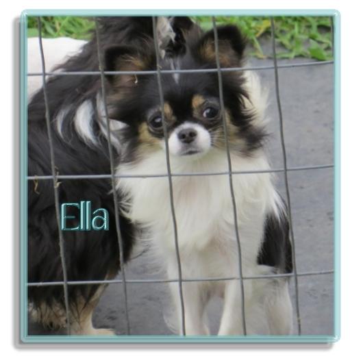 Oneway Ella Belle